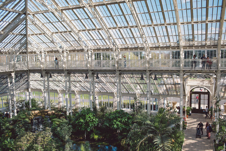Built Structure Architecture Day Plant Glass - Material Indoors  Incidental People Greenhouse Arch Ceiling Group Of People City Nature People Growth Building Real People Tree Plant Nursery