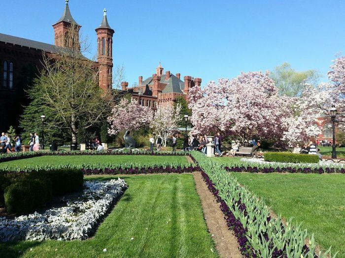 Spring Into Spring, castle garden