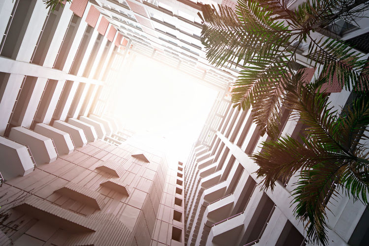 Modern building with sunlight for business concept Outdoor Tree Nature Summer Leaf Modern Architecture Buildings Sunlight Urban Office City Business Skyscraper Cityscape Sunset Exterior Skyline Downtown Empty Design Road Sky Travel View Street Sunrise Abstract Structure Sun Background Tower Floor Outdoors High Estate Construction Luxury Financial Nobody Built Evening Light New Window Apartment District Center Day Built Structure