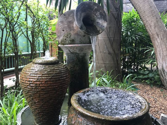 Drinking Fountain Day No People Outdoors Plant Animal Themes Statue Palm Tree Sculpture Water Tree Nature Tire Close-up Mammal