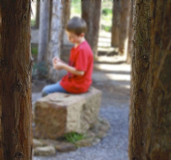 Forest He Is Me Like A Dream Lost In Thought... Pensive Mood Selective Focus Tranquility Tree Trunk Troubled Times
