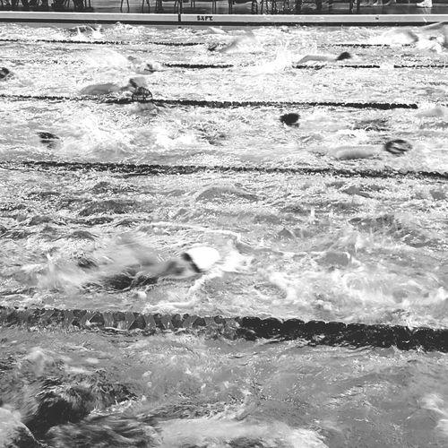 Rush hour at the swim meet. Swimming Swim Swimming Pool Swimmer Aquatic Swim Meet