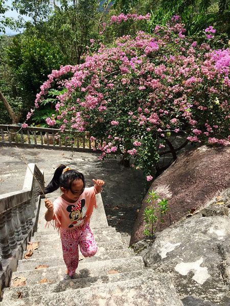 Favourite shot! This young child chased us around an empty temple laughing and hiding in the pink flowers Moments Special Moment Traveling Adventure Colour Of Life EyeEm Best Shots EyeEm Best Edits EyeEm Gallery Eyeemphoto Temple Enjoying Life Photooftheday Sunshine Happiness Laughing