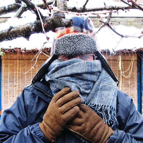 Winter Adult Cold Temperature Outdoors Warm Clothing Real People One Man Cold Genius Tree Snow