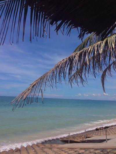 Summer ☀ Beach Phan Thiet Sunlight First Eyeem Photo No Filter Waves Horizon Over Water