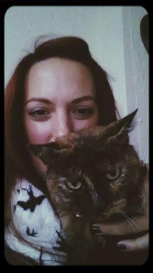 Cat Selfie... Cat♡ Selt Portrait 100happydays day 19