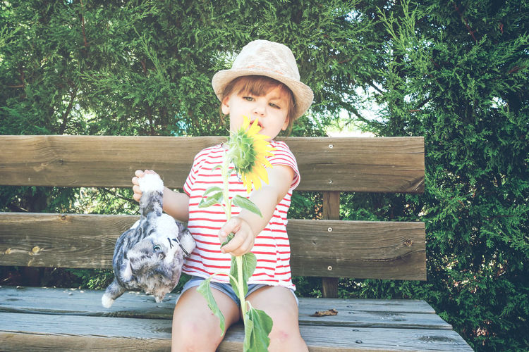 Real People Child Domestic Animals Mammal One Person Childhood Domestic Pets Animal Animal Themes Girls Leisure Activity Females Bench Lifestyles Plant One Animal Seat Wood - Material Innocence Plush Toy Summer Sunflower Park