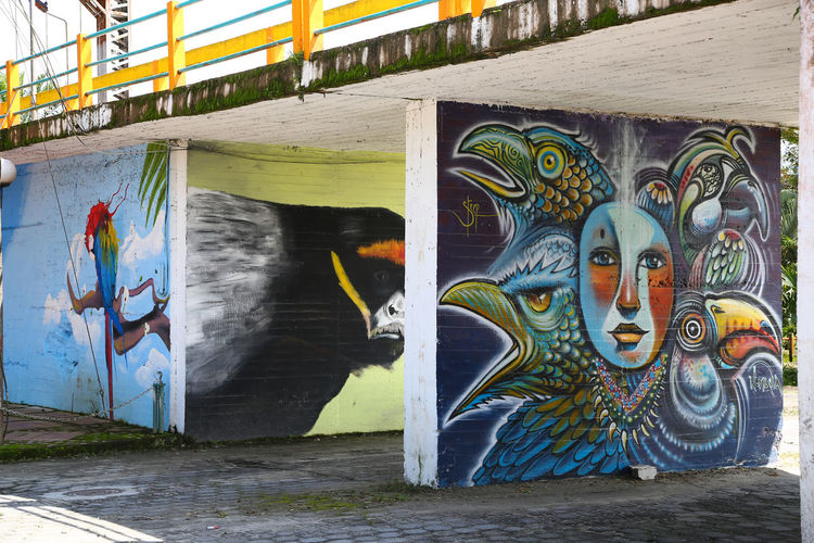 Architecture Art And Craft Building Exterior Built Structure Chinese Dragon Creativity Day Ecuador Graffiti Multi Colored No People Outdoors Water