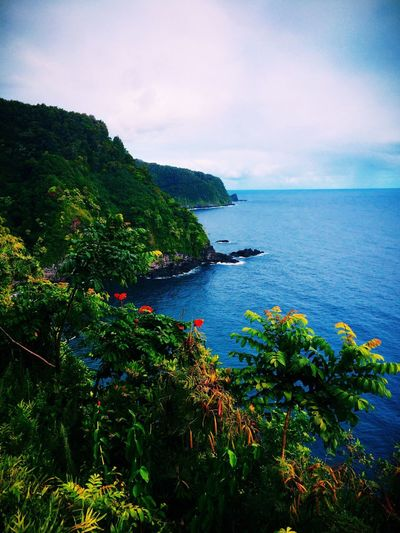 Nature hikes through Hana