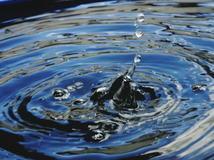 Abstract Photography Water Splashing Droplet Waterfront Rippled Blue Motion Drop High Angle View Concentric Floating In Water High-speed Photography Natural Pattern Splashing Nature Outdoors