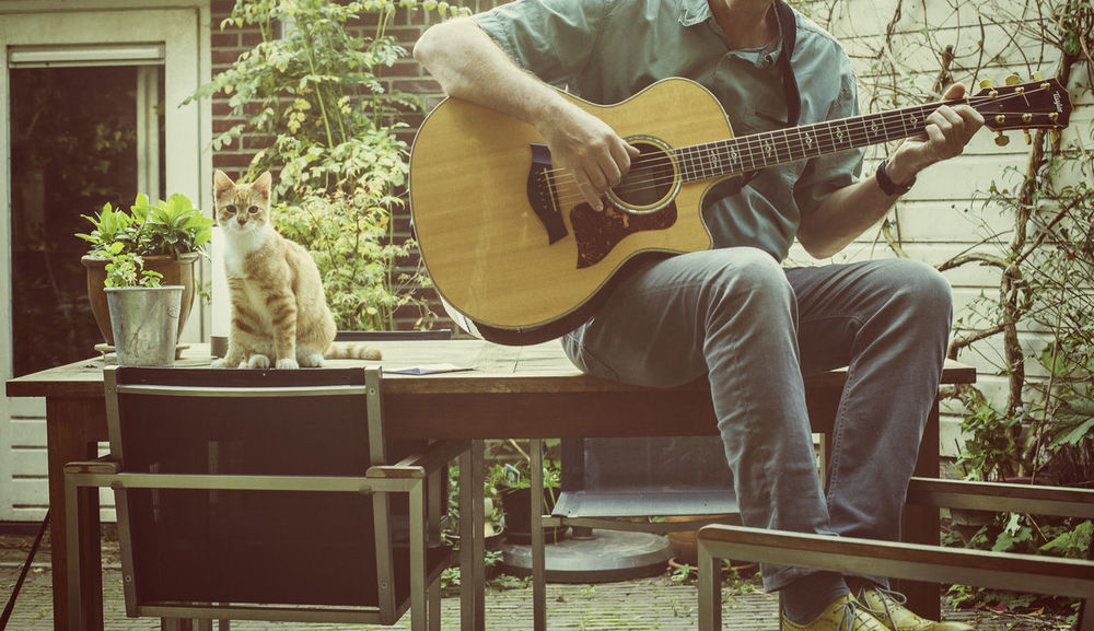 Red kitten sitting next to man playing guitar in garden Adorable Casual Clothing Cat, Pets, Animal Garden Guitar Guitar Player Kitten Leisure Activity Lifestyles Listen Listening To Music Love Man Music Nature Pet Playing Guitar Sitting Sitting, Seated Swimming