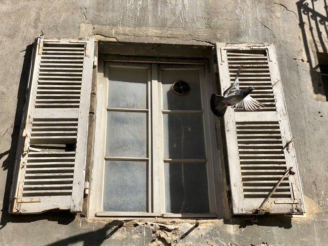 Abandoned Architecture Building Building Exterior Built Structure Closed Damaged Day Glass - Material History House Low Angle View Metal No People Old Open Outdoors Ruined Run-down Sunlight Window