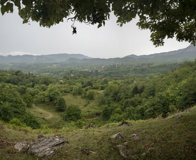 Village Kinchkha Tree Plant Scenics - Nature Mountain Beauty In Nature Landscape Nature Growth Tranquil Scene Tranquility Day Environment Green Color Land Sky No People Non-urban Scene Outdoors Animal Themes Idyllic