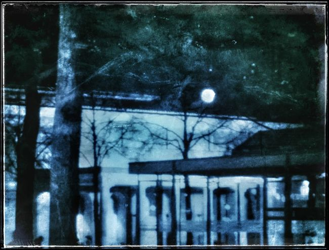 Night moos _____ Night Outdoors Bare Tree No People Architecture Nature Silhouette Tree Forest Textured  Snapseed Snapseed Editing  Artistry_emotions Retrolux Filter Fa_fadeaway Mode_emotive EyeEmNewHerе