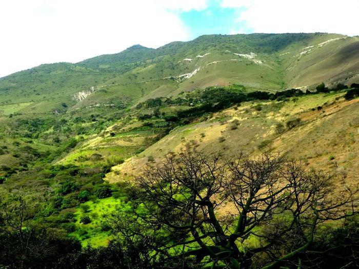 Campo Paisaje Natural Ayabaca