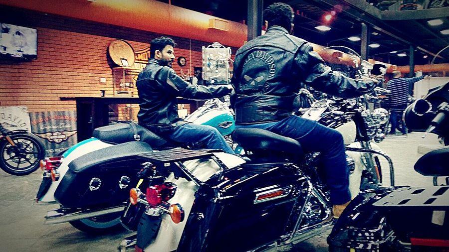 Bikes Ride Or Die Hanging Out Harley-Davidson Enjoying Life Harleydavidson