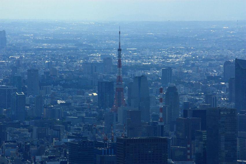 Battle Of The Cities Town Japan Tokyo Tower City Tokyo Tower 2015