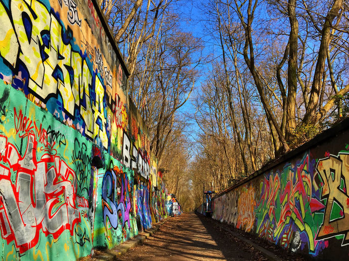 Graffiti in the park Art Art And Craft Creativity Dirt Road Forest Forest Path Forest Track Forestwalk Graffiti Graffiti Graffiti Art Graffiti Wall Graffitiart Graffito Multi Colored Road Sunny Day Sunnyday Track Tree Wall Wall Art Wall Painting Wallart Walls