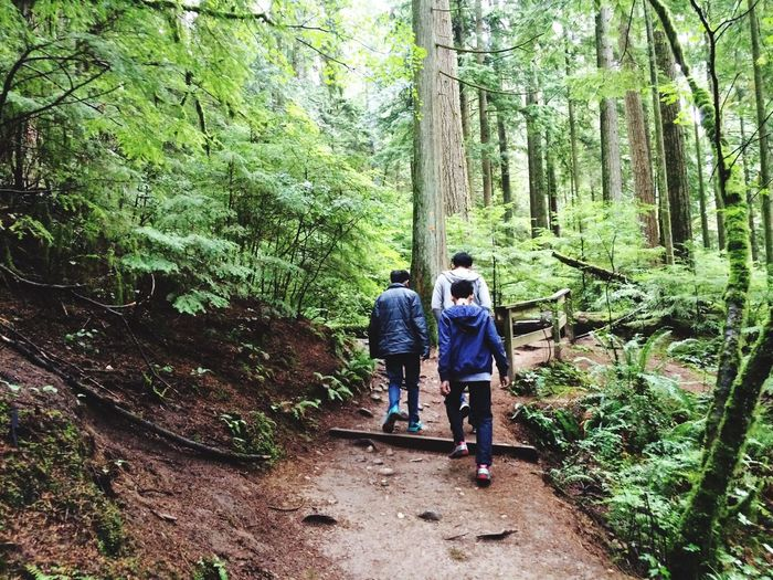 Forest Vacations Togetherness Outdoors Tourism Hiking Father And Son Father And Sons Father And Sons Moment Father And Son Time