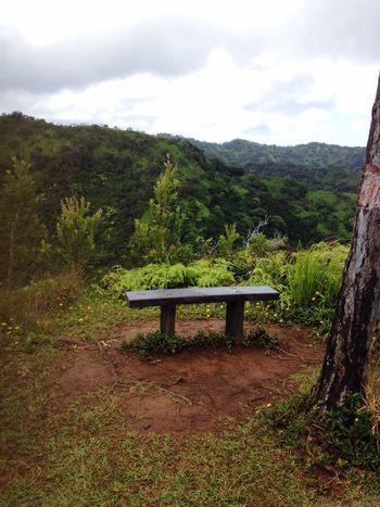 Hiking View Peace Bench Thankful Adventure Seat Vegetation Resting Spot