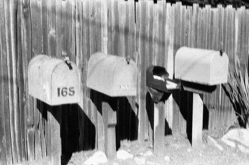 Outdoors Film Grainy Photo Carmel California Blknwht Koduckgirl Ilford Delta 3200 NATURA Classica
