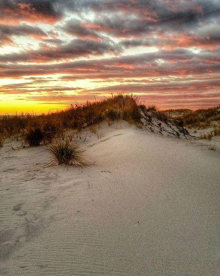 SUNSET ON THE DUNES TONIGHT! Insearchofsunset Dailywalk Sunsets Lidobeach Wintersky Dunes Wintersunset My_365 Longisland Longislandphotographers Longislandinstagram