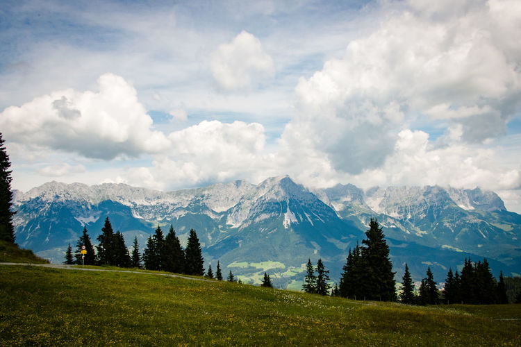 Wilder Kaiser Mountain Cloud - Sky Scenics - Nature Sky Beauty In Nature Plant Environment Mountain Range Landscape Tree Tranquil Scene Nature Land Grass No People Non-urban Scene Tranquility Day Idyllic Travel Destinations Outdoors Pine Tree Mountain Peak Pine Woodland