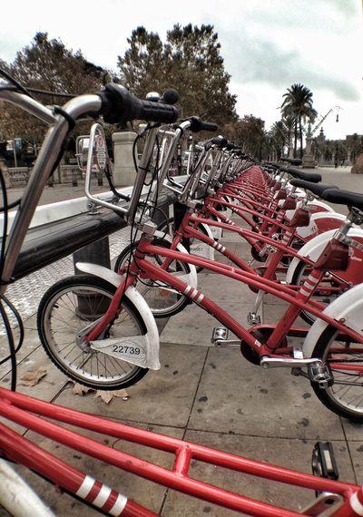Bicing Perspectives Punto De Vista Punto De Fuga Bicycle On Your Bike