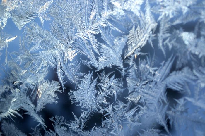 Winter magic and beauty frozen on the window. The revival of the winter fairy tale. Abstract Backgrounds Close-up Cold Temperature Day Fragility Frost Frosted Glass Frozen Full Frame Ice Ice Crystal Nature No People Outdoors Snow Snowflake Textured  Weather Window Winter