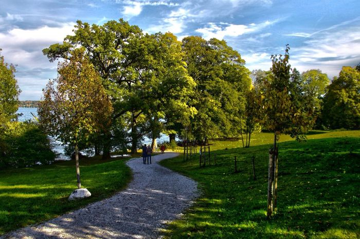 Starnbergersee Starnberg Bernried Tree Grass Tranquil Scene Tranquility Landscape Scenics Growth Nature Green Color Beauty In Nature Day Green Field Narrow Sky Non-urban Scene Footpath Grassy Countryside Outdoors