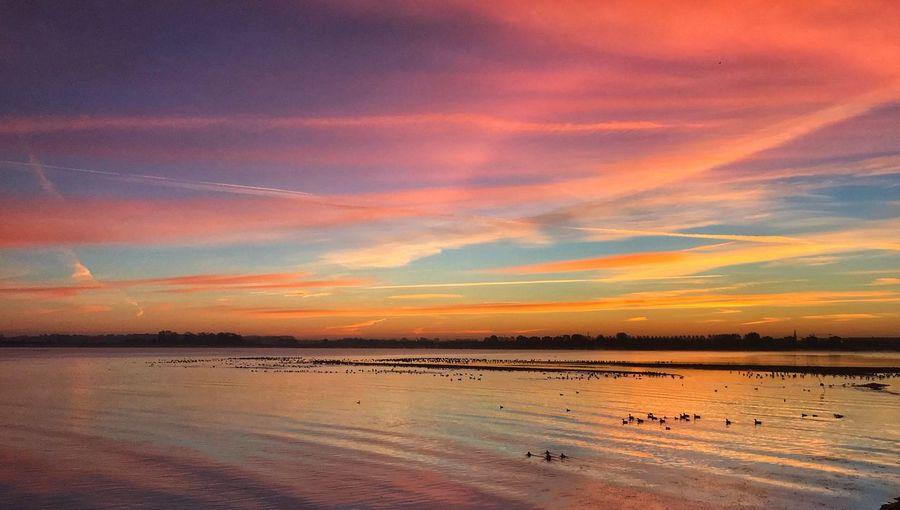 Sunrise Water Sky Sea Scenics - Nature Beauty In Nature Cloud - Sky