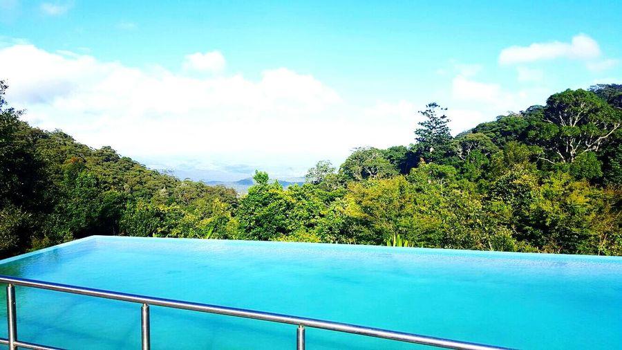 Check This Out Taking Photos 😘😍😝💗✌✋👍 Relaxing Enjoying Life Blue Water Green Green Green!  Scenery Shots 💓 Beautiful Nature 2016♡ Perfect_shot