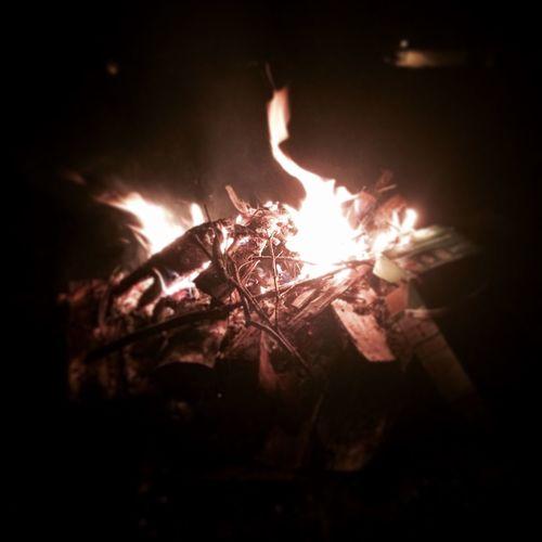 🔥 Fire - Natural Phenomenon First Eyeem Photo