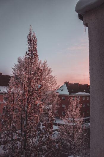 Morning sky in