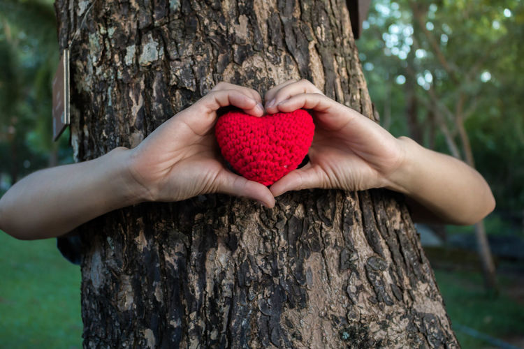 Cropped hands of person holding heart shape pillow against tree