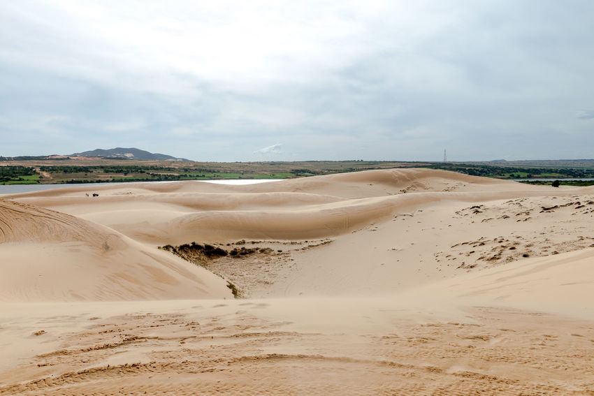 Sand dunes, Mui Ne South Vietnam Dec 2016 Arid Climate Beach Beauty In Nature Cloud - Sky Day Desert Landscape Nature No People Outdoors Physical Geography Sand Sand Dune Scenics Sea Sky Sky, Vietnam, Arabia, Backgrounds, Blue, Travel, City, Cultures, Desert, Dessert, Dry, Heat – Temperature, Horizontal, Journey, Landscape, No People, Pattern, Binh Thuan Province, Indochina, Land, Mui Ne Bay, Natural, Outdoors, Panoramic, Photography, Red Tranquil Scene Tranquility Travel Destinations Water First Eyeem Photo