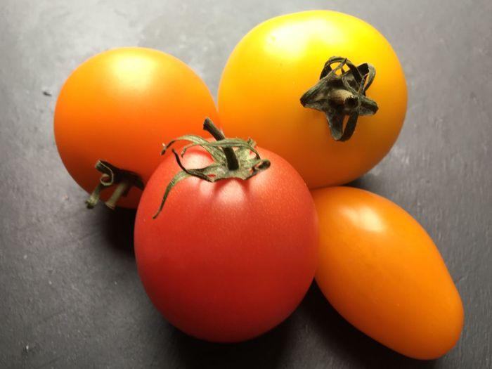 Paris Tomatoes