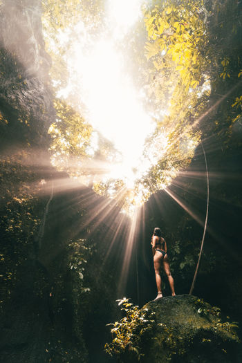 Woman standing on rock in forest against bright sun