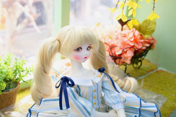 Flower Day Nature Hair Dressed Up Dress Dolls Doll Photography Females Beautiful Woman Child Children Only Nine Nine Blond Hair Fashion