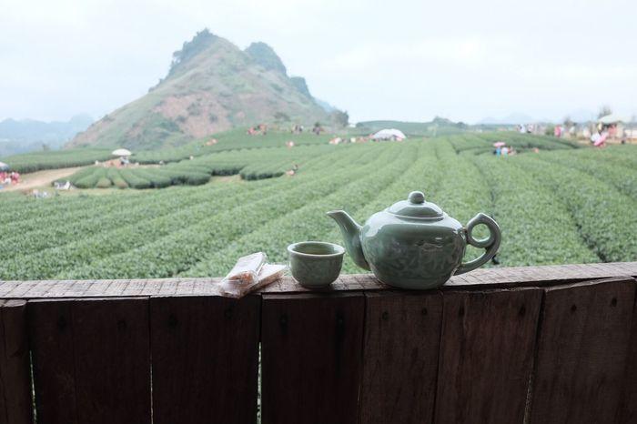 Teafarms Teafield Teapot Tea Time Vietnam Trip Vietnamtravel Vietnambeauty Vietnamtea Oolong Tea Mocchauvietnam Mocchau