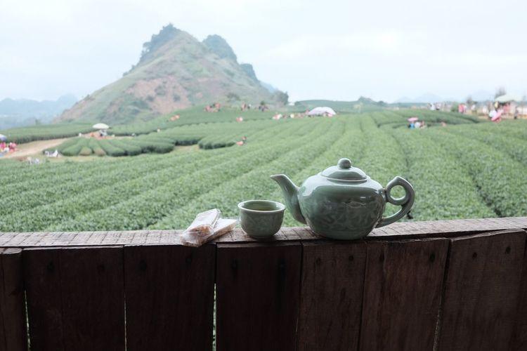 Teafarms