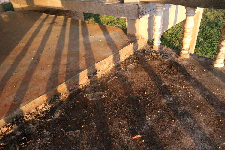 High angle view of footpath by railing