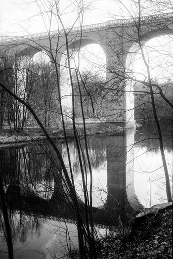 Location: Viadukt Olympus Trip 35 | APX 100 -> 200 | D-76 AgfaPhoto APX 100 (new) Architecture Blackandwhite EyeEm Best Shots - Black + White Kodak D-76 Monochrome Olympus Trip 35 Reflection River Water