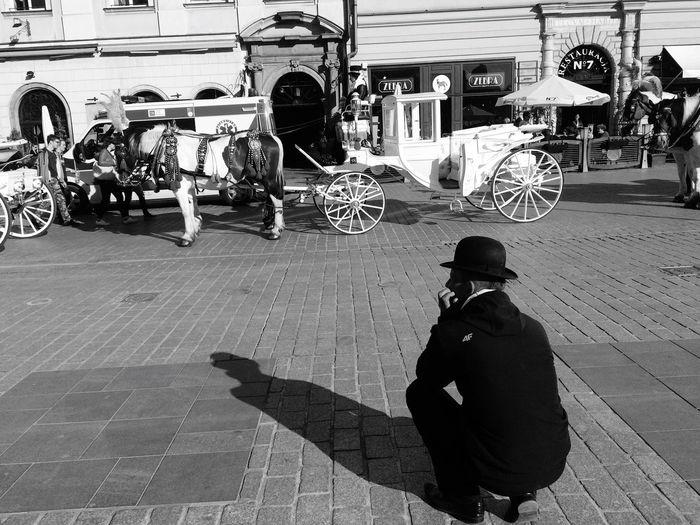 Shadow Horse Horseman