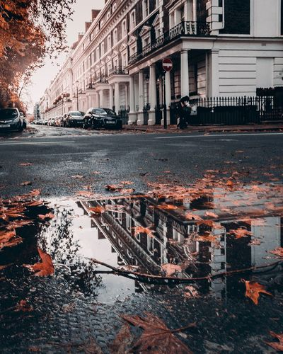 Autumn Reflections Lovelondon London EyeEm Gallery EyeEm Best Shots Autumn colors Leaves Autumn Reflection Mood Depthoffield Longexposurephotography Built Structure Building Exterior Architecture Water City Building Puddle Nature Day Reflection No People Outdoors Street Sky Transportation Wet Road Rain Autumn Mood A New Perspective On Life