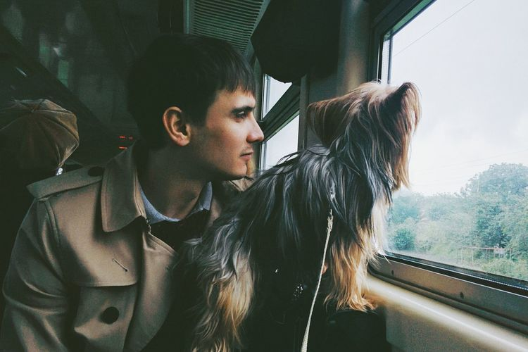 Young man with hairy dog looking through window in train