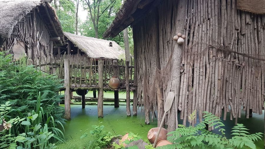 Africa African Tribal Huts River Nature Tree Water Thatched Roof Architecture Built Structure Stilt House Traditional Building Shelter Hut Shack