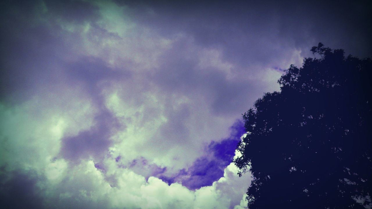 sky, low angle view, cloud - sky, beauty in nature, nature, weather, scenics, no people, silhouette, tranquility, sky only, outdoors, backgrounds, day, blue, storm cloud, tree, multi colored