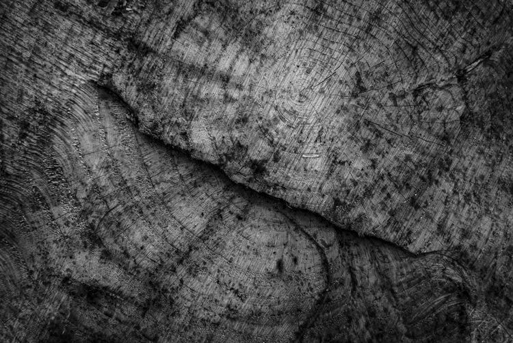 Abstract Backgrounds Close-up Day Dirty Full Frame Indoors  Industry Nature No People Paper Pattern Rough Rustic Serrated Textured  Textured Effect