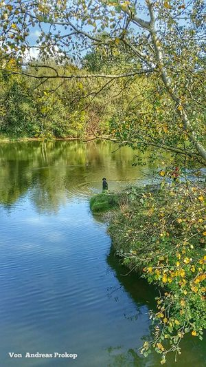 Autumn in Vienna Austria . A wonderful time in the Nature . Happy week!
